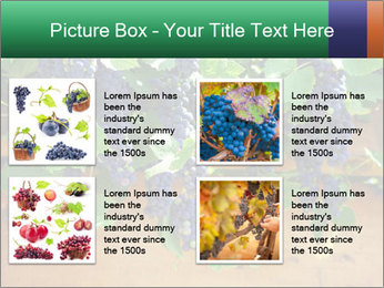 0000078826 PowerPoint Template - Slide 14