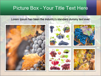 0000078826 PowerPoint Template - Slide 19