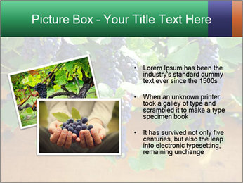 0000078826 PowerPoint Template - Slide 20