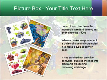 0000078826 PowerPoint Template - Slide 23
