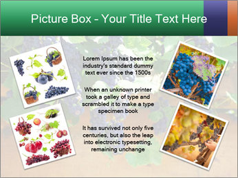 0000078826 PowerPoint Template - Slide 24