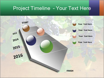 0000078826 PowerPoint Template - Slide 26