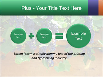 0000078826 PowerPoint Template - Slide 75