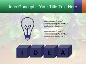 0000078826 PowerPoint Template - Slide 80
