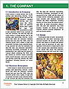 0000078826 Word Templates - Page 3