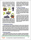 0000078826 Word Templates - Page 4