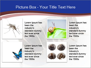 0000078829 PowerPoint Templates - Slide 14