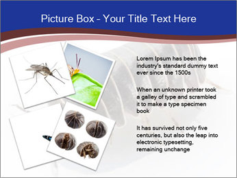 0000078829 PowerPoint Templates - Slide 23