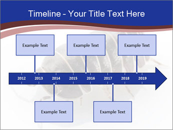 0000078829 PowerPoint Templates - Slide 28