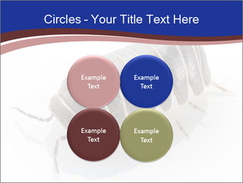0000078829 PowerPoint Templates - Slide 38