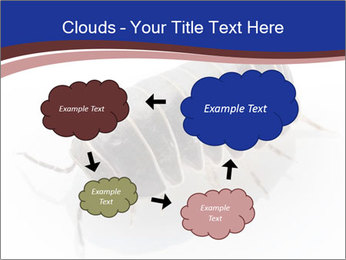 0000078829 PowerPoint Templates - Slide 72