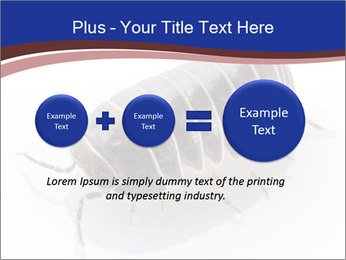 0000078829 PowerPoint Templates - Slide 75