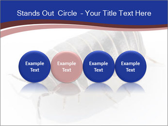 0000078829 PowerPoint Templates - Slide 76