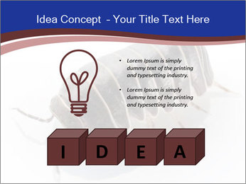 0000078829 PowerPoint Templates - Slide 80