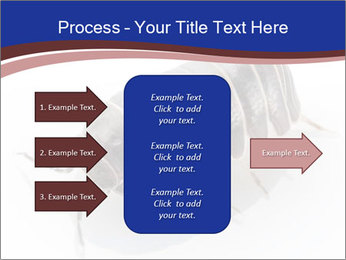 0000078829 PowerPoint Templates - Slide 85