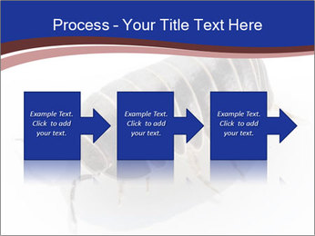 0000078829 PowerPoint Templates - Slide 88