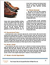 0000078830 Word Template - Page 4