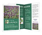 0000078831 Brochure Templates