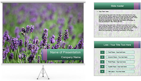 0000078831 PowerPoint Template