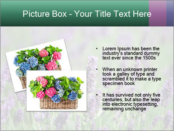0000078831 PowerPoint Template - Slide 20