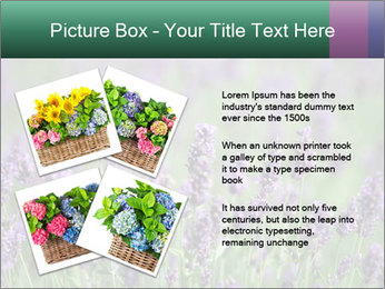 0000078831 PowerPoint Template - Slide 23
