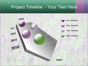 0000078831 PowerPoint Template - Slide 26