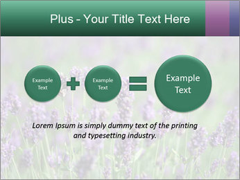 0000078831 PowerPoint Template - Slide 75