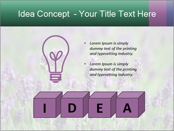 0000078831 PowerPoint Template - Slide 80