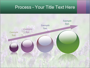0000078831 PowerPoint Template - Slide 87