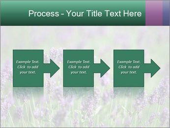 0000078831 PowerPoint Template - Slide 88