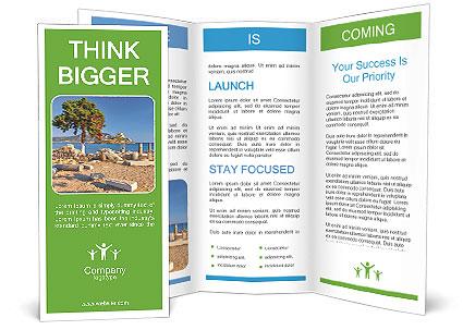 0000078833 Brochure Template