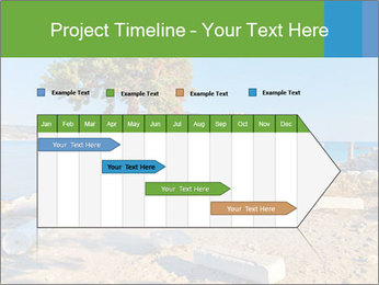 0000078833 PowerPoint Templates - Slide 25