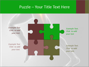 0000078834 PowerPoint Template - Slide 43