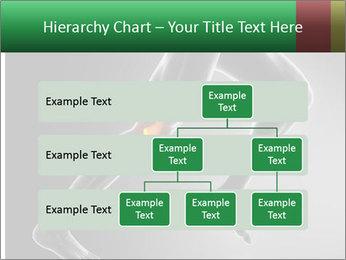 0000078835 PowerPoint Templates - Slide 67