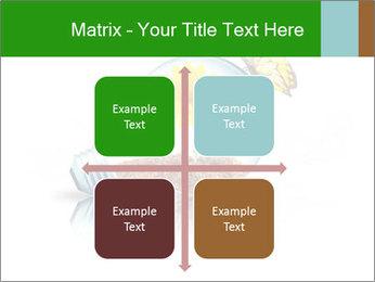 0000078837 PowerPoint Templates - Slide 37