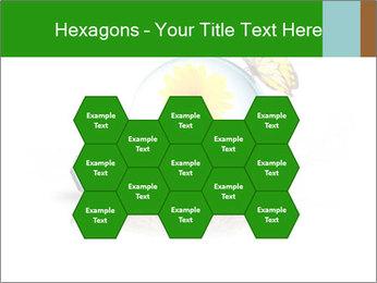 0000078837 PowerPoint Templates - Slide 44