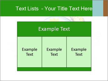 0000078837 PowerPoint Templates - Slide 59