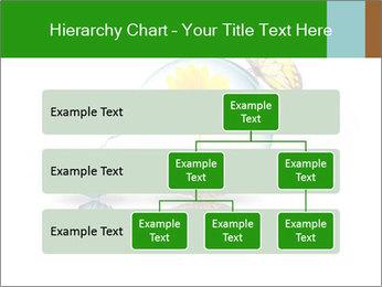 0000078837 PowerPoint Templates - Slide 67