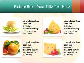 0000078843 PowerPoint Template - Slide 14