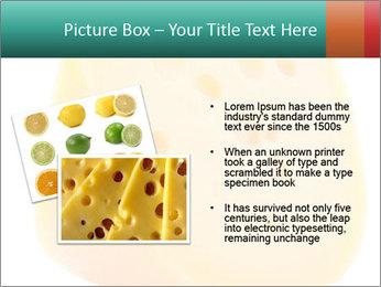 0000078843 PowerPoint Template - Slide 20