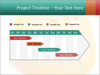 0000078843 PowerPoint Template - Slide 25