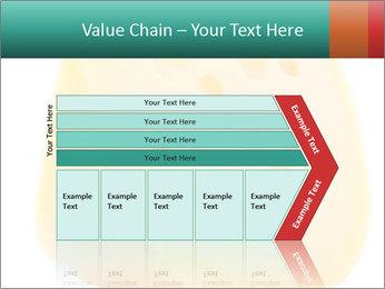 0000078843 PowerPoint Template - Slide 27