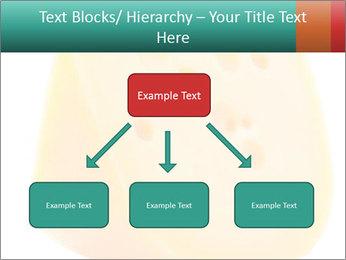 0000078843 PowerPoint Template - Slide 69