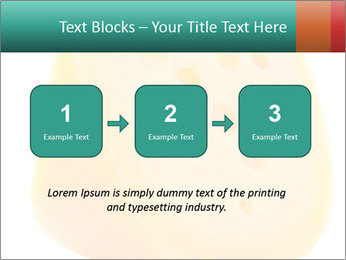 0000078843 PowerPoint Template - Slide 71