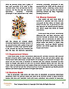 0000078850 Word Template - Page 4