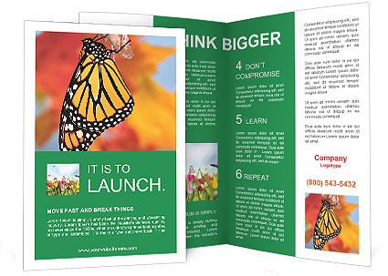 0000078857 Brochure Template
