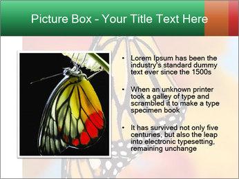 0000078857 PowerPoint Template - Slide 13