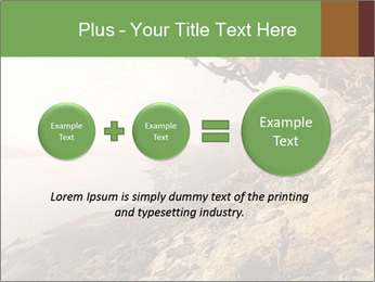 0000078879 PowerPoint Template - Slide 75