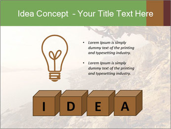 0000078879 PowerPoint Template - Slide 80