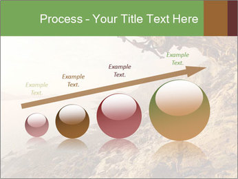 0000078879 PowerPoint Template - Slide 87